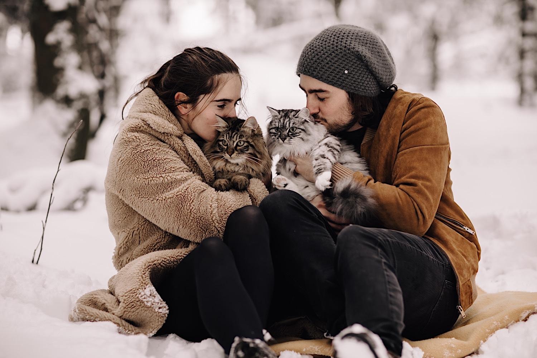 loveshoot koppelshoot katten cats